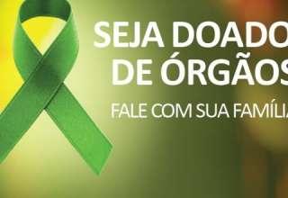 Doador-de-órgãos02