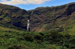 Suspensa liminar que liberava gado no Parque Nacional da Serra da Canastra