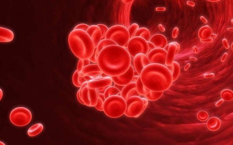 Dia do hemofílico: mitos e verdades sobre a doença