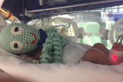 """Um Polvo de Amor"" na UTI Neonatal do HNSG"