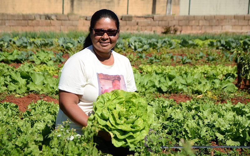 Programa de Hortas Comunitárias completa 35 anos em Sete Lagoas