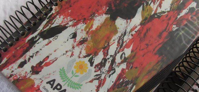 APAE Sete Lagoas : Agenda 2018 já a venda!