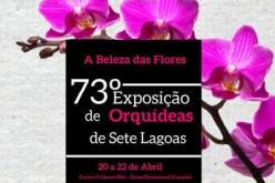 Exposição de Orquídeas chega ao Casarão nesta sexta-feira