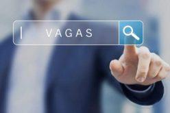 Vagas Clial Consultoria (23/7)