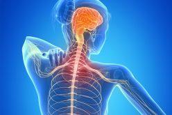 Esclerose Múltipla atinge 2,3 milhões de pessoas no mundo: saiba como manter a qualidade de vida