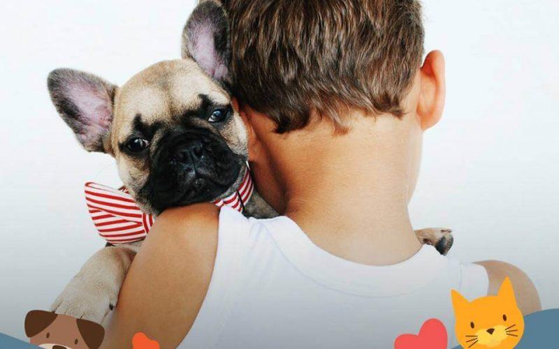 Feira de adoção e atividades gratuitas para pets na Feira da Família