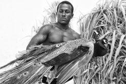 Exposição no Casarão vai retratar a força da cultura afro-brasileira