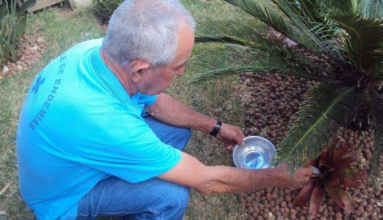 Amostragem deixa Sete Lagoas em alerta contra a dengue