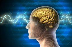 Disfunção cognitiva também é indício importante na esclerose múltipla